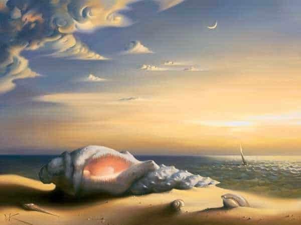 coquillage plage