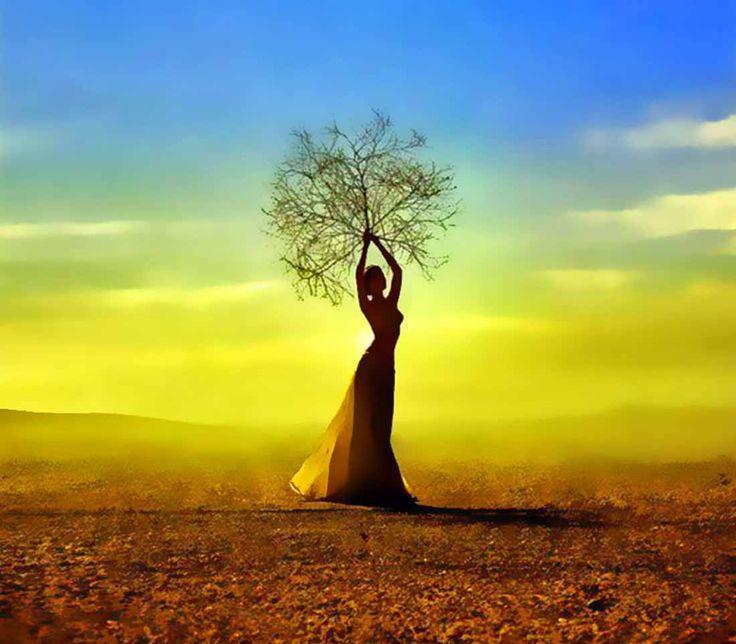 femme arbre lumiere